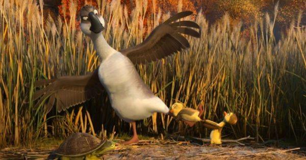 Duck-Duck-Goose-1-600x314.jpg